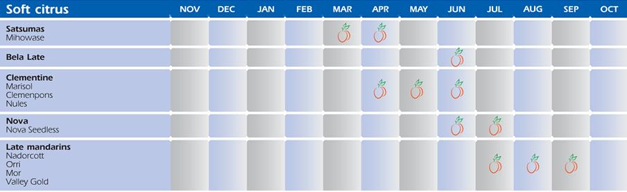 availability-calendar-2
