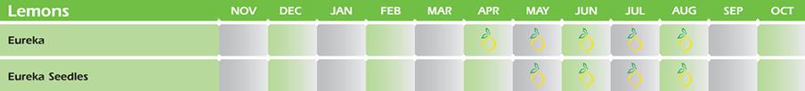 availability-calendar-4